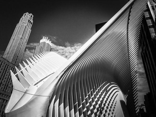 Oculus, World Trade Centre Station, New York Oculus NY New York