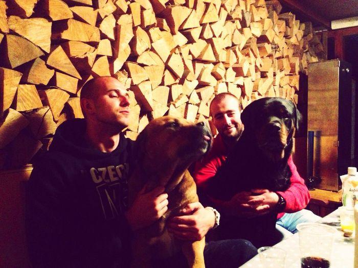 Dog Dog Love Rottweiler Bandog Friends Better Than People 55Kg ❤️