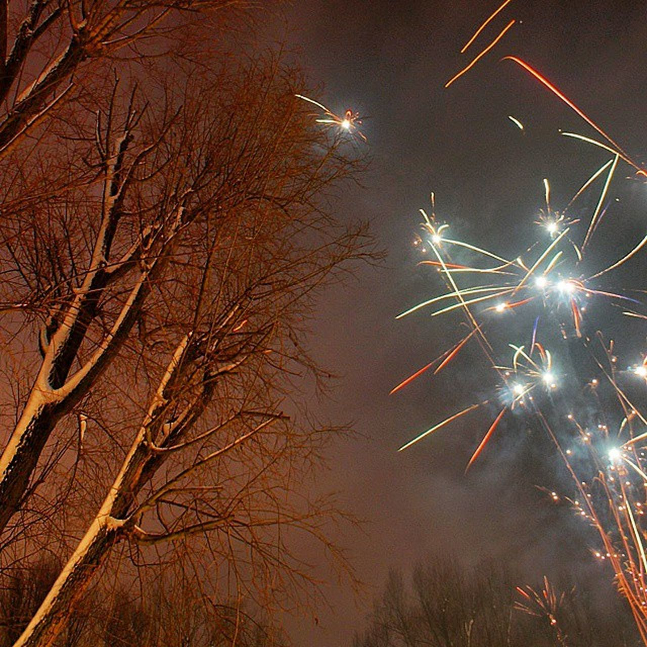 celebration, night, firework display, exploding, firework - man made object, event, low angle view, long exposure, arts culture and entertainment, motion, outdoors, no people, bare tree, illuminated, sky, firework, tree