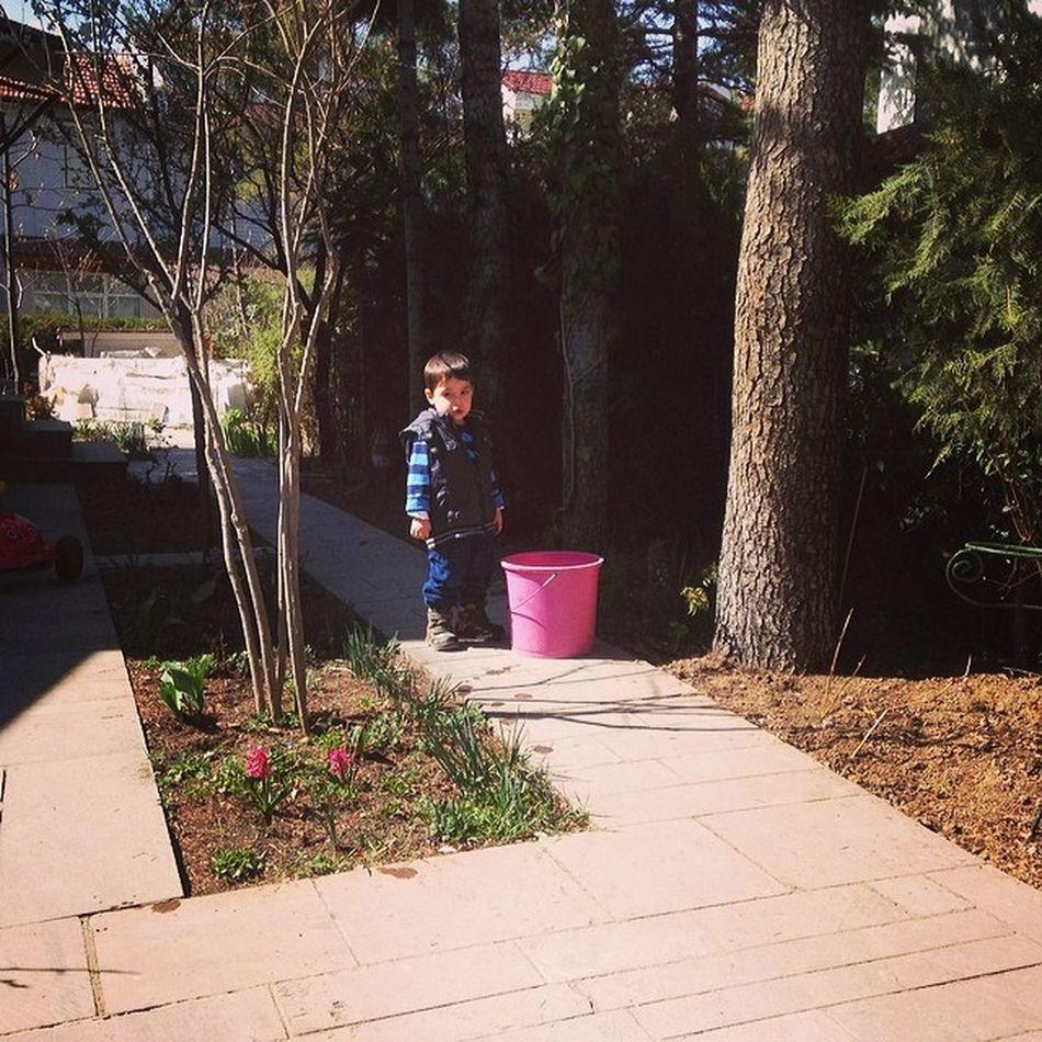 Bahargeldi çiçeklere Ilk Cansuyu vermek ilk çiçek ekimi