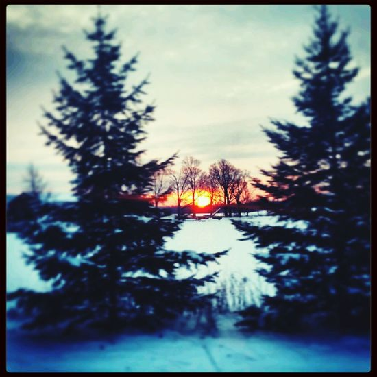 Beautiful :) Canada