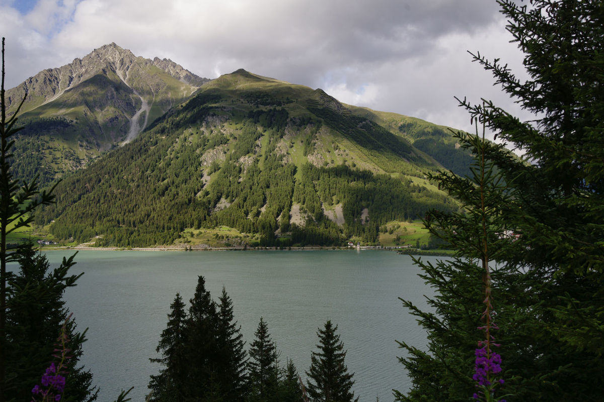 Austria Countryside Geology Hairpin Hill Lake Lakeshore Lush Foliage Majestic Mountain Mountain Range Non-urban Scene Outdoors Physical Geography Remote River Roadtrip Scenics Tranquil Scene Tranquility Tree Valley Water