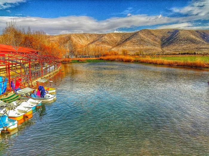 Utter Freedom!! Follow me @AmeedShehayeb and enjoy my photography. Lake Spring Nature Bekaa Valley Lebanon