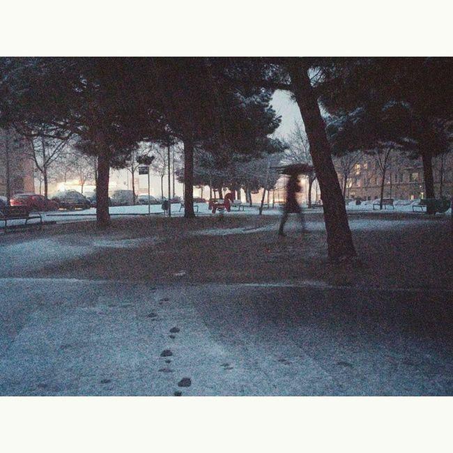 Si me quieres querer, quiéreme ahora. No dejes el Amor para mañana... JoaquínSabina Quotes Snow Terrassa Street Morning Cantforget