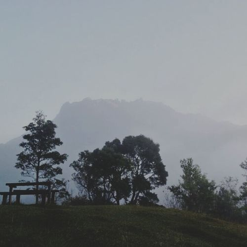 Capturing Freedom Behind The Mountains Relaxing View Borneo Land Sabahan Forestwalk Akinabalu