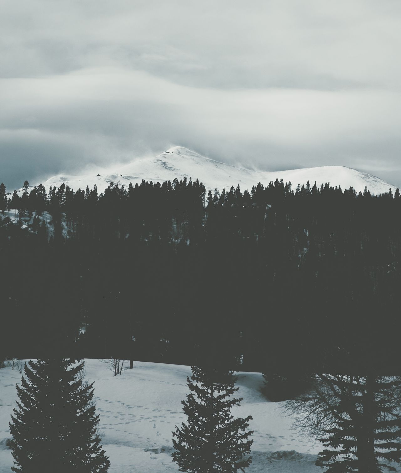 Winter Cold Temperature Snow Nature Weather Tranquil Scene Tranquility Beauty In Nature Mountain Scenics Sky Tree Outdoors Frozen Mountain Range No People Day Landscape Forest Cloud - Sky