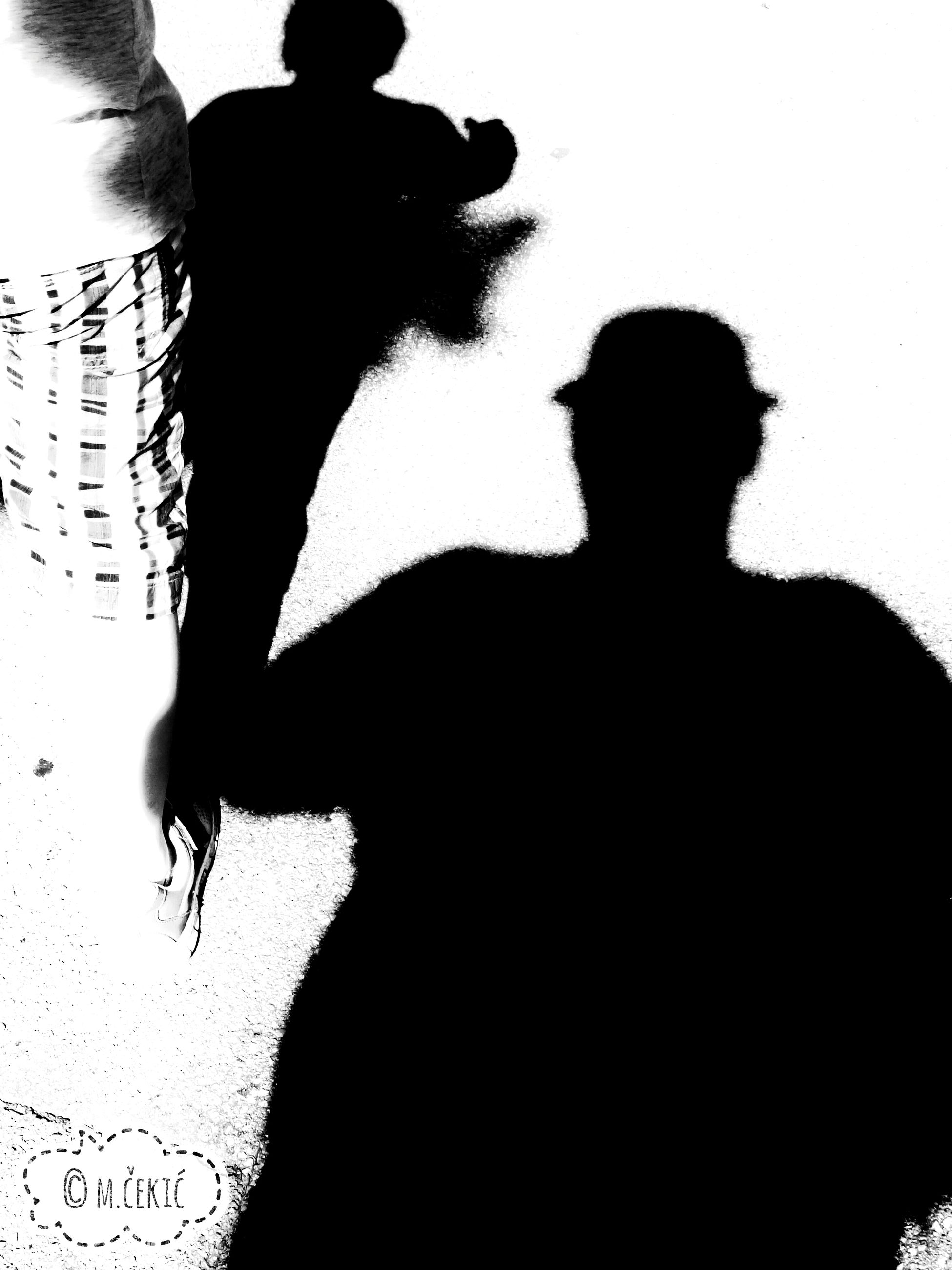 shadow, men, silhouette, sunlight, pets, sunny, person, focus on shadow, domestic animals, outline