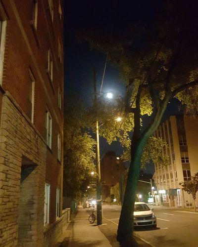 Moonlight Walk First Eyeem Photo