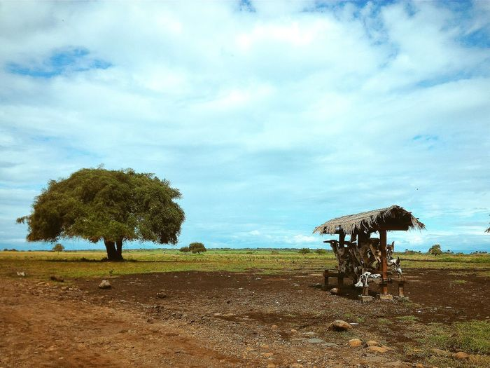 """""""Baluran National Park"""" Enjoying Life Nature Nature Photography Clouds And Sky Clouds Landscape Landscape_photography Trees Trees And Nature Bestshot INDONESIA Outdoors Golden Moment Traveling Nationalpark"""