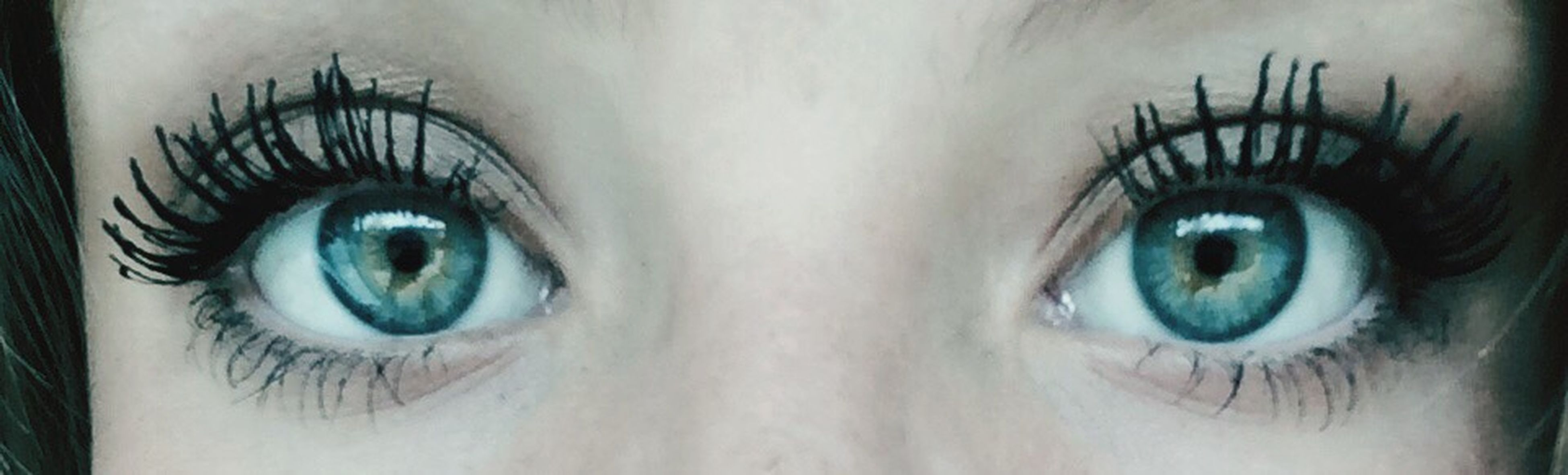 looking at camera, human eye, portrait, close-up, indoors, full frame, eyesight, eyelash, sensory perception, circle, backgrounds, auto post production filter, part of, digital composite, human face, extreme close-up, staring