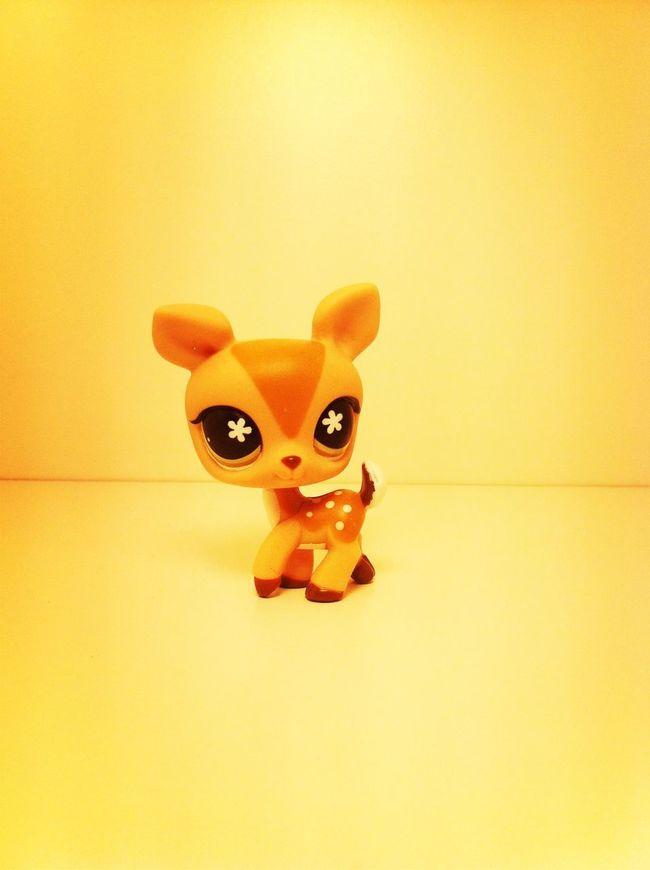 Littlestpetshop So Cute