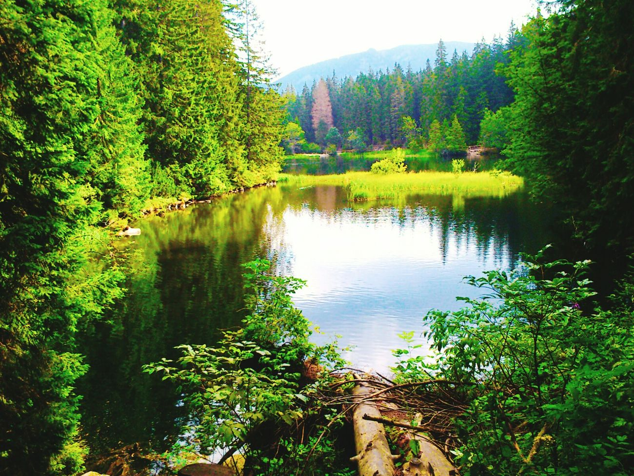 Relaxing Natural NizkeTatry Vrbicke Pleso Demanovska Dolina Hobby-Photo:) First Eyeem Photo Naturalphotohobby:) My Production;)