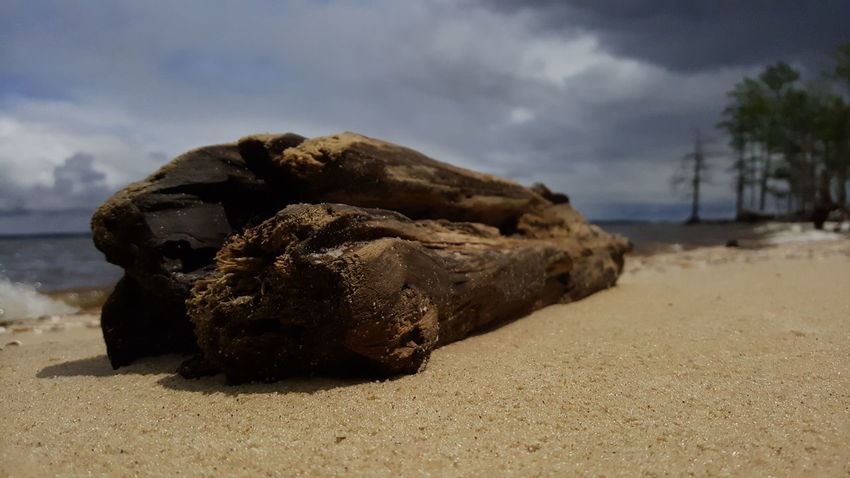 Driftwood. PhotographybyTripp Smartphone Photography Phoneography Samsung Galaxy Note 5 Camera360Ultimate Pixlr Beastgrip Pro Driftwood Natural Light And Shadow Effect Unedited.  Raw Photography No Edits No Filters Creative Photography Creative Shots
