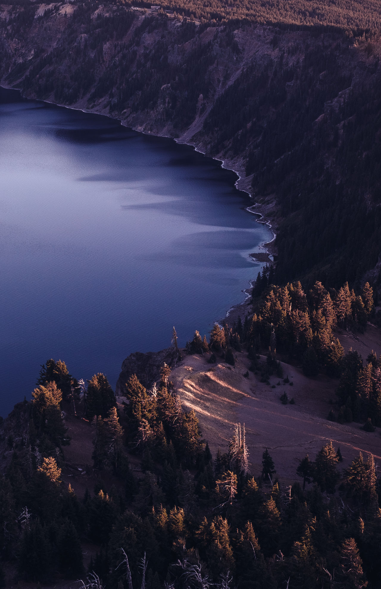 Claw Marks Adventure Beauty In Nature Crater Lake National Park Elevated View Growth Lake National Park Nature No People Oregon, Seaside, Outdoors Pacific Northwest  Pine Tree Scenics Shadows Sunset Travel Tree United States Water My Year My View Finding New Frontiers Flying High