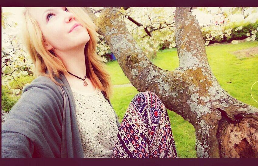 Spring 🎉🎥🌅 Spring Naturelovers Germany Kirschblüten  Tree Baum TreePorn