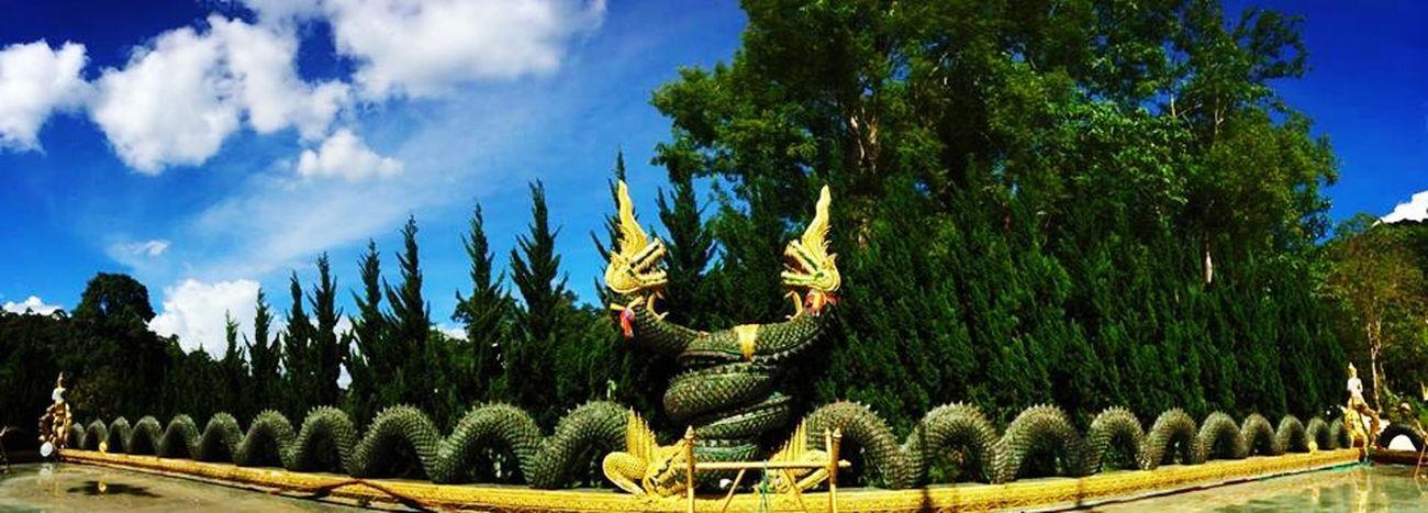 Naga courtship beside of the Buddhish temple Wat Phra Buddhabart Si Roy) Mae Rim , Chiang Mai , Thailand. IPhoneArtism Temple Panorama Eye4photography  Hello World Chiang Mai   Thailand EyeEm Best Shots Thailand Iphonephotography Travel Photography