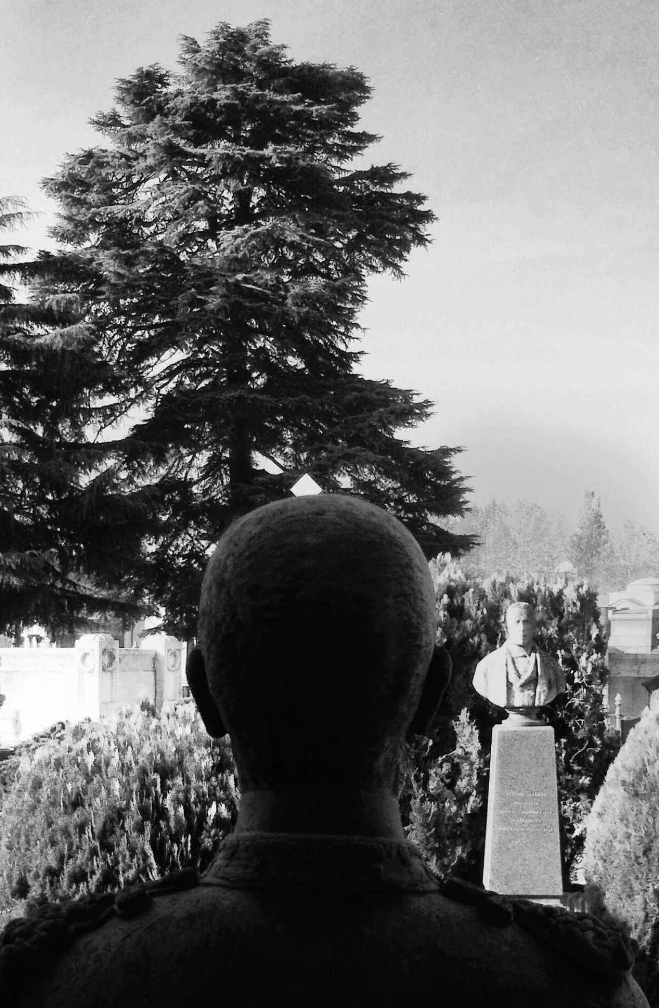 Infinity watching NEM Black&white NEM BadKarma