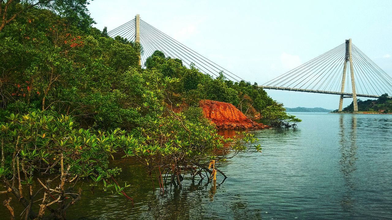 Barelang bridge Bridge - Man Made Structure Barelang Bridge In Batam Island Sea Water Tree Sky Nature Connection Growth Architecture Built Structure Green Color Day No People Outdoors Scenics Beauty In Nature Tourism Batam-Indonesia