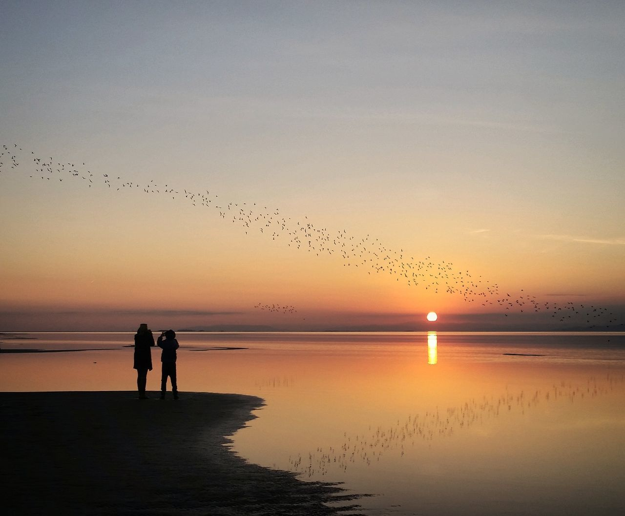 sunset, silhouette, nature, sky, water, sea, beauty in nature, beach, scenics, reflection, sun, togetherness, idyllic, tranquil scene, outdoors, tranquility, horizon over water, clear sky, two people, full length, real people, men, bird, people