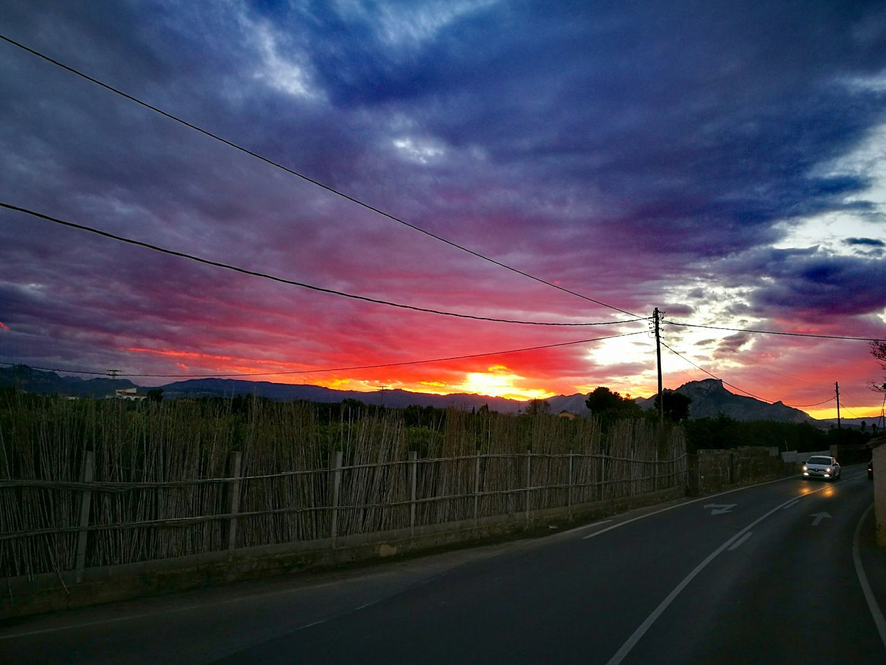Sunset Dramatic Sky Sky Outdoors No People Tree Cloud - Sky Beauty In Nature Nature Agriculture