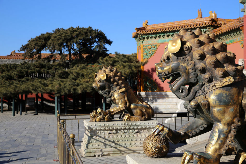 Lion statues in Forbidden City, Beijing. Architecture Building Exterior Clear Sky Day Horizontal No People Outdoors Place Of Worship Sculpture Sky Statue Travel Destinations Tree Forbidden City Pagoda Pagodas Forbidden City, Beijing, China Backgrounds Pagoda Temple Pagoda Building Pagode China Beijing