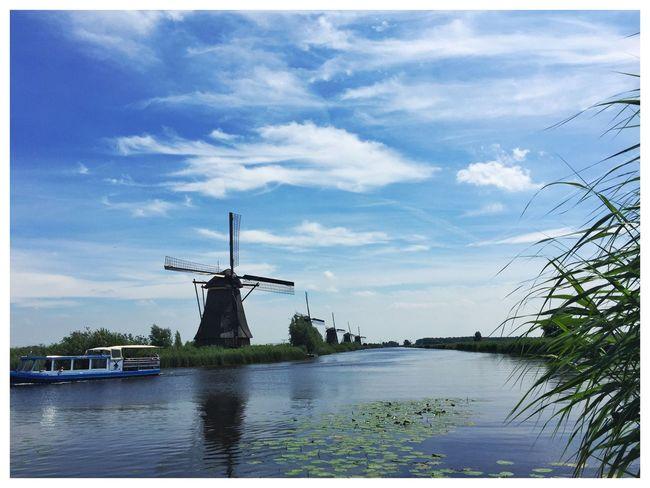 Kinderdijk Landscape_Collection Windmill Blue Sky