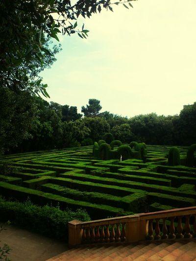Barcelona Park Laberinto