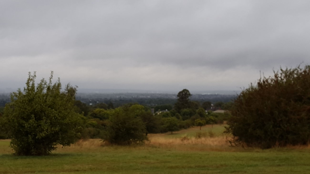 Landscape Nature Cloudy Outdoors Sky Cloud Tree Summer Outside Taking Photos Clouds Epsom Downs Moody Sky Rain