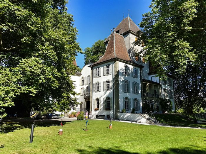 Castle Park Schloss Jegenstorf Lawn Blue Sky Trees
