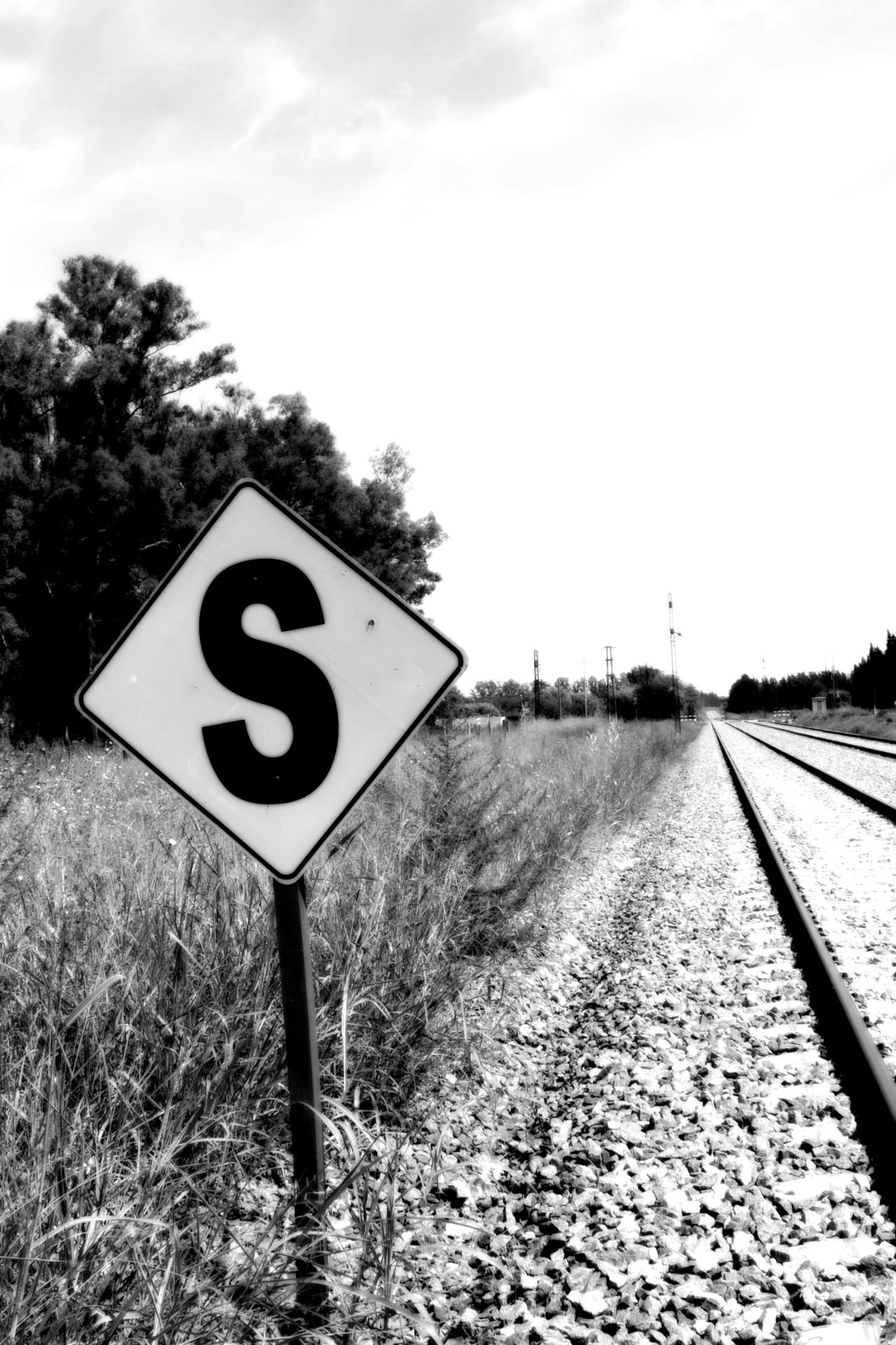 Road Sign Tree Sky Nature Outdoors Speed Limit Sign Communication Day The Way Forward Grass No People Blackandwhite Rails