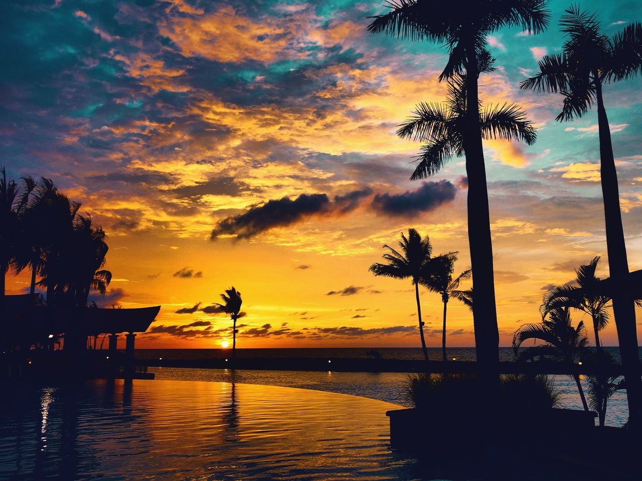 Sunset Swimming Pool Beach Coconut Trees Nature Natural Beauty Colors The Empire Hotel & Country Golf Brunei Brunei Brunei Darussalam Bandar Seri Begawan Traveling Palm Tree Sky Sea