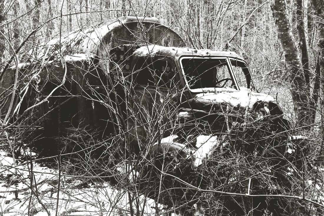 Forest Abandoned Old Truck Black And White Monochrome Nature Textures Nature Taking Over Overgrown Decay Snow Yacolt Mountain