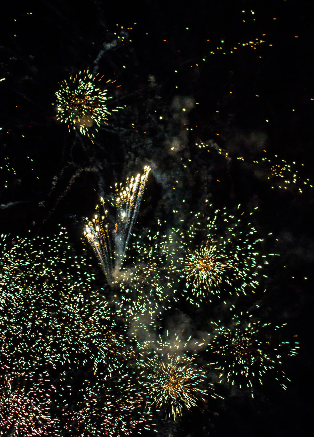 Canada Day Celebration Celebration Dark Explosion Of Color EyeEm EyeEm Best Shots Firework Display Firework Photography Fireworks Glowing Having Fun Holiday Illuminated July 1st Light Motion Night Night Photography No People Ontario, Canada Outdoors Showcase August Sky The Week On EyeEm