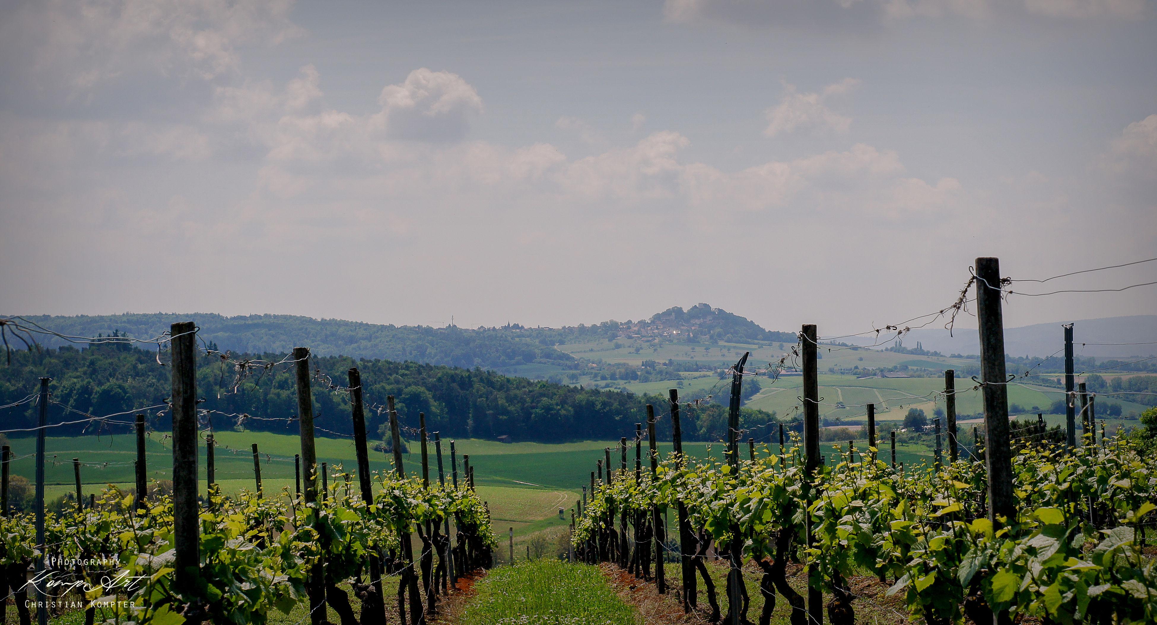 Veste Otzberg Sky Nature No People Outdoors Beauty In Nature Day Nature GERMANY🇩🇪DEUTSCHERLAND@ Wine Rack Winecountry View Burg Green Color Sony Alpha 77 M2 Minolta 50mmf 1,7