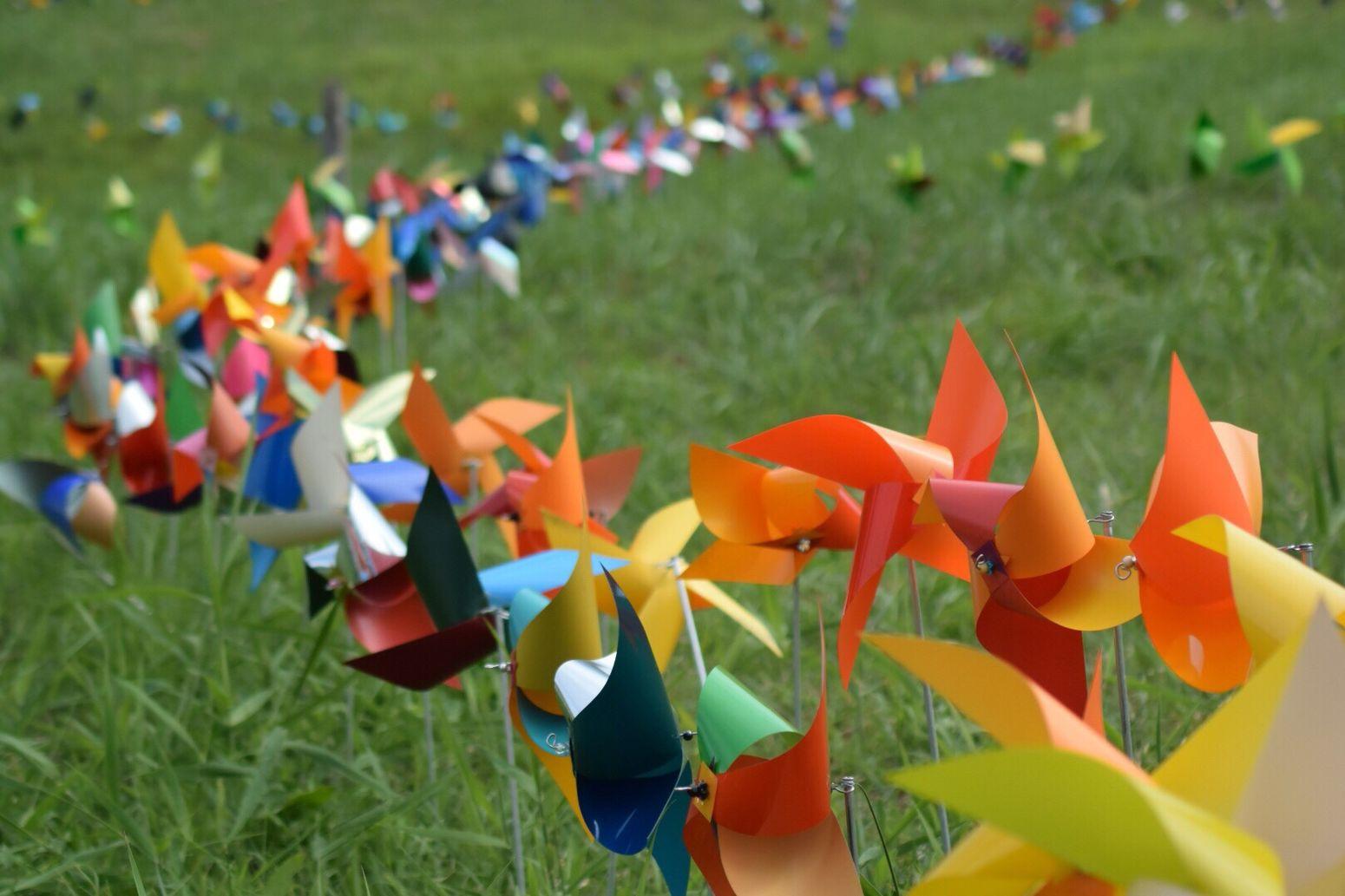 スキー場 の斜面いっぱいの 風車 とっても Colorful in 柏崎 Japan Taking Photos