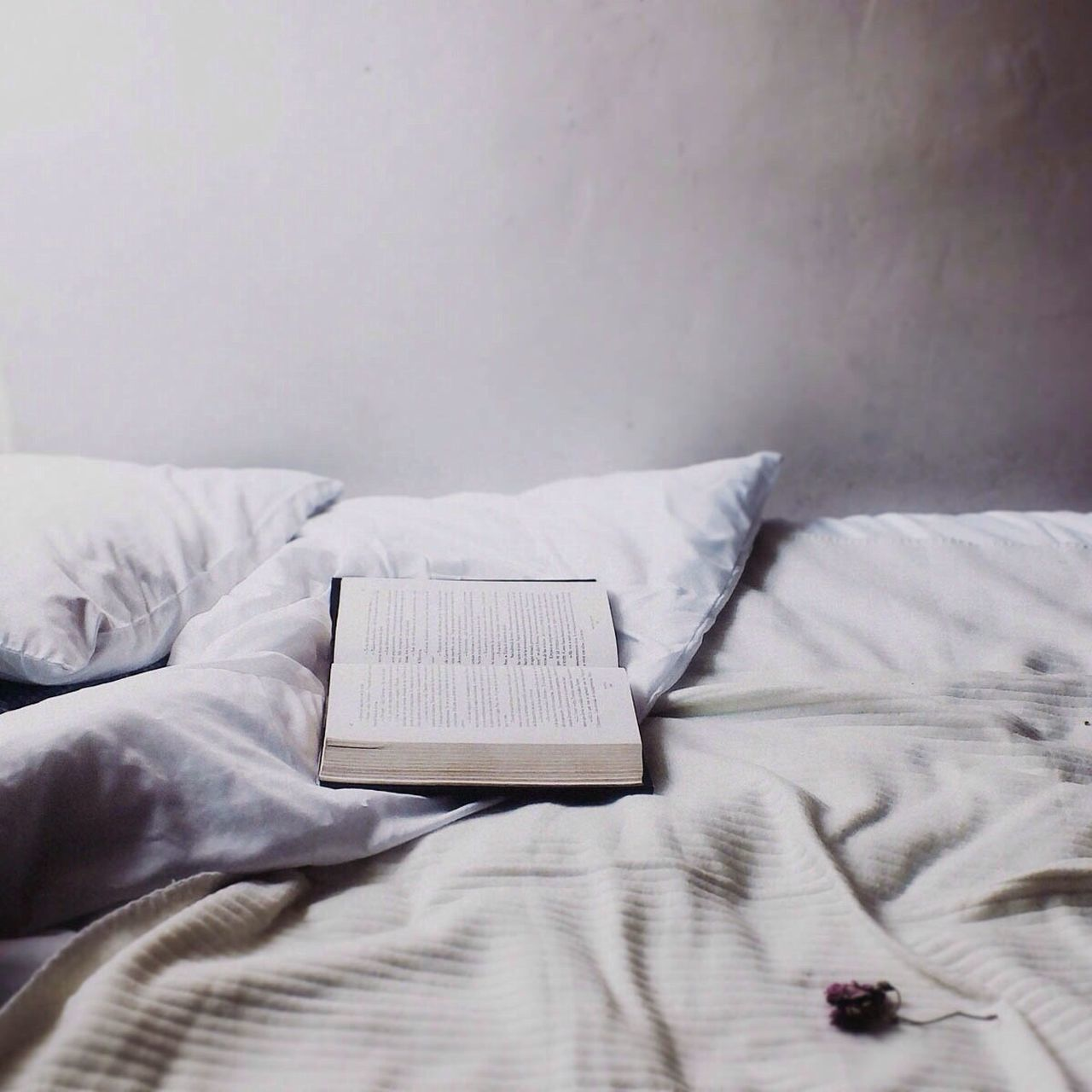 Beautiful stock photos of books, Bed, Bedtime, Book, Copy Space
