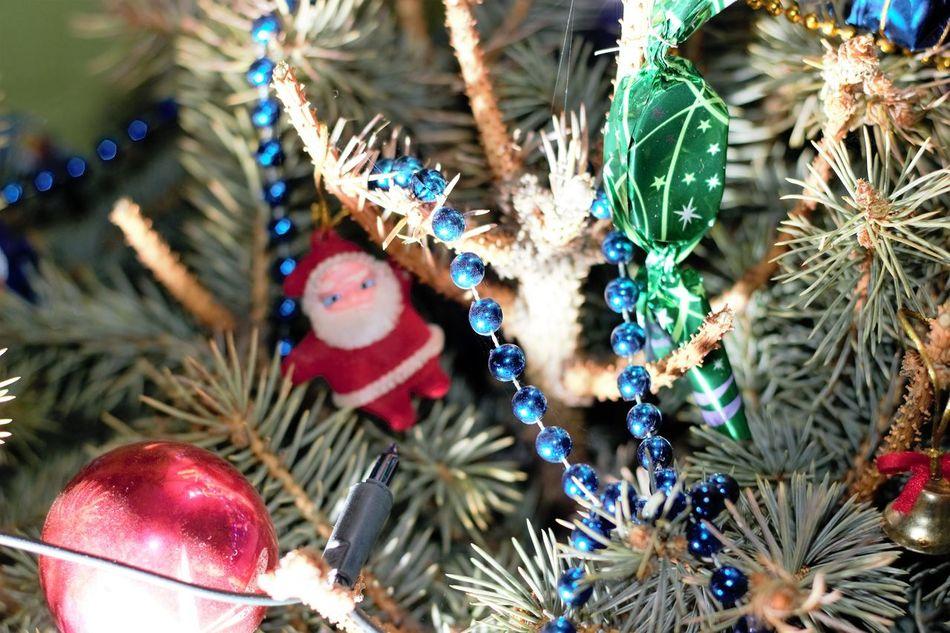 Beautiful stock photos of santa claus,  Celebration Event,  Christmas,  Christmas Decoration,  Christmas Lights