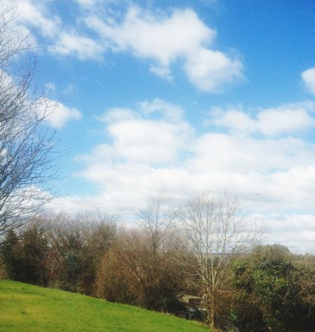 Taking Photos Nature Light Sunny Sunday Easter Happy Holidays 😉