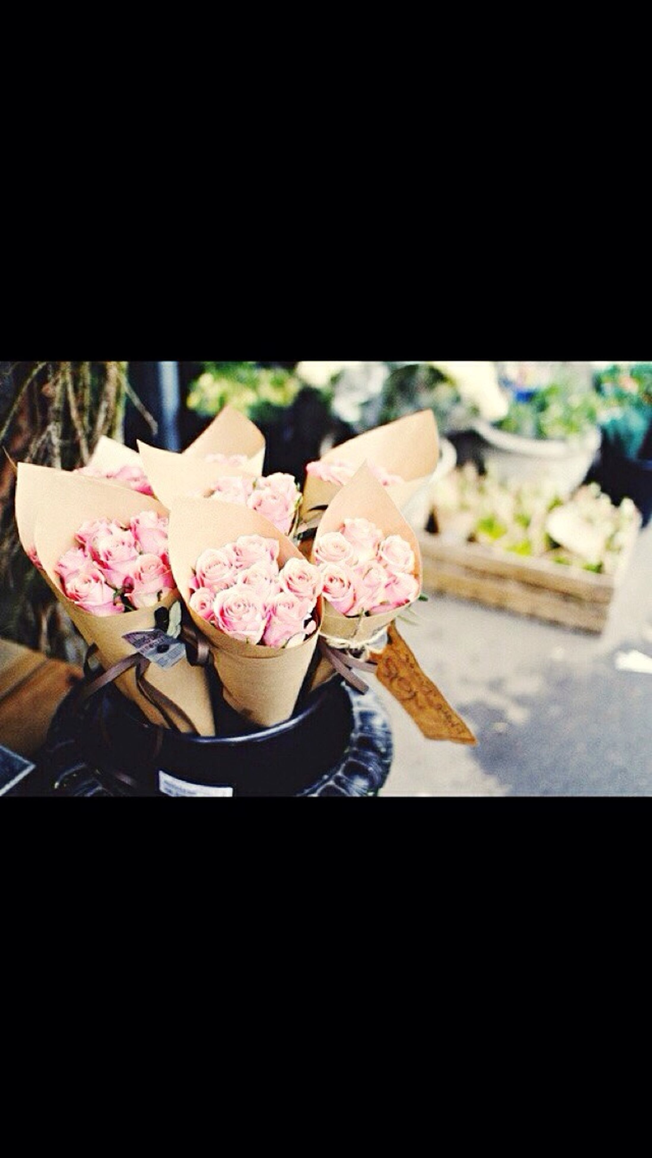 indoors, flower, fragility, close-up, freshness, petal, rose - flower, one person, home interior, vase, flower head, pink color, table, still life, bouquet, focus on foreground, high angle view, auto post production filter, plant, selective focus