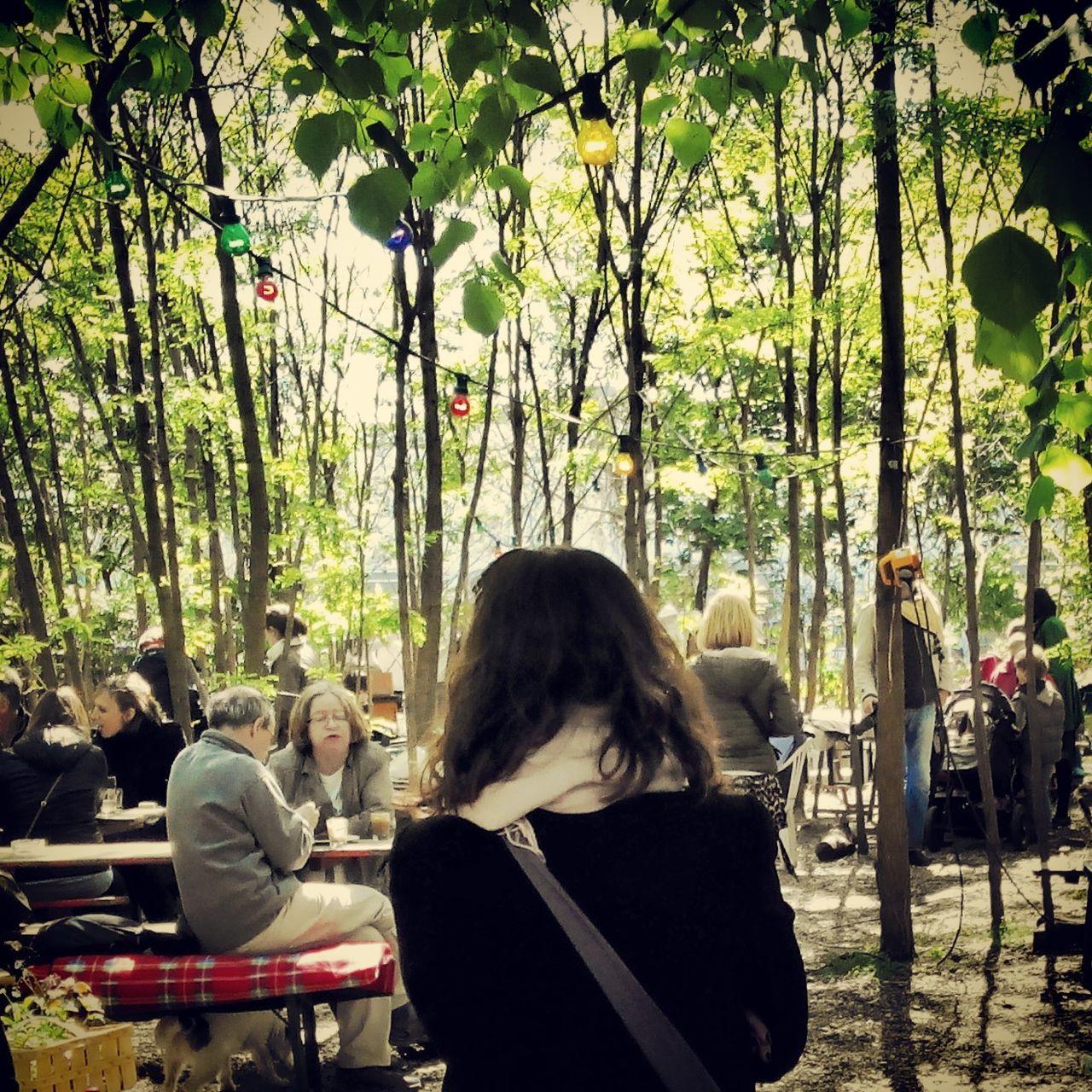 Berlin Trip Relaxing Forest In The Forest Trees Aliceinwonderland Alice In Wonderland
