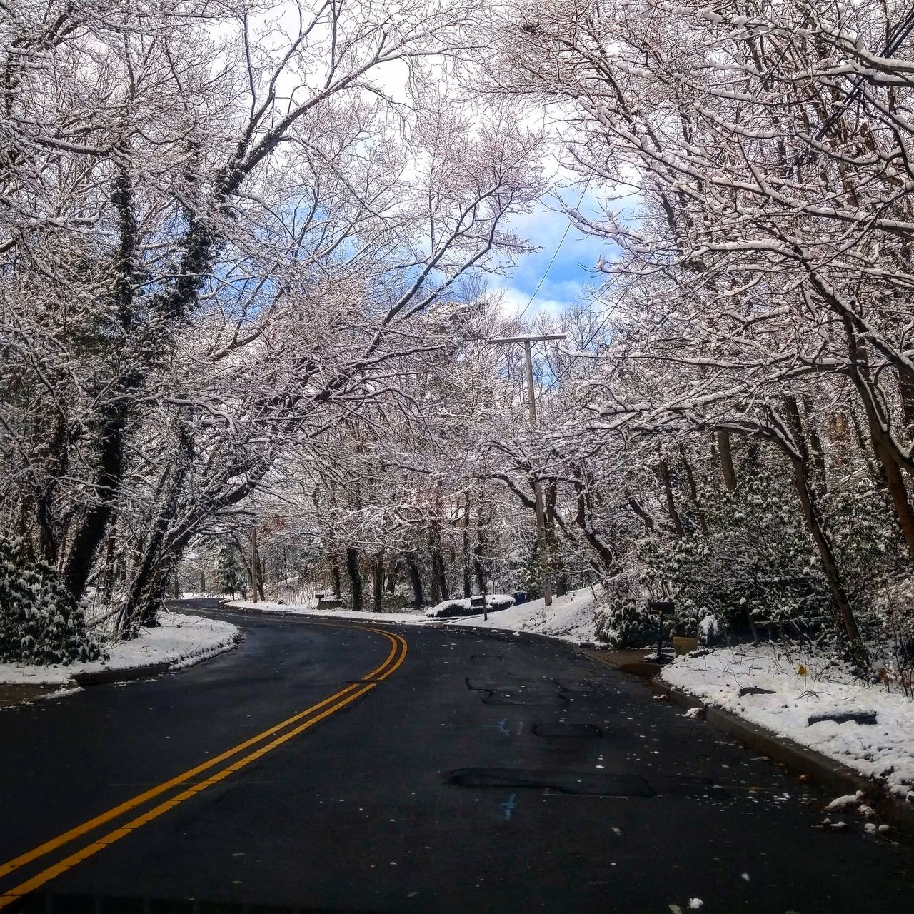 Sky Tree No People Day Outdoors Road Nature Beauty In Nature Winter Snow Ice New Jersey Amateurphotographer  PhonePhotography Outdoor PhotographyBeautiful It's All About Perception Check This Out Mother Nature Is Amazing