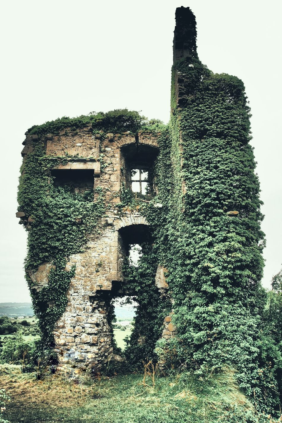 Carrigogunnel Castle County Limerick Ireland Castle Castle Ruin Built Structure Architecture History Ivy Damaged Wall - Building Feature Tower Old Run-down Stonework Stone Detail Fireplace Deterioration Obsolete Outdoors Destroyed Building Demolished Historic Siege Eyem Best Shots Eyemphotography