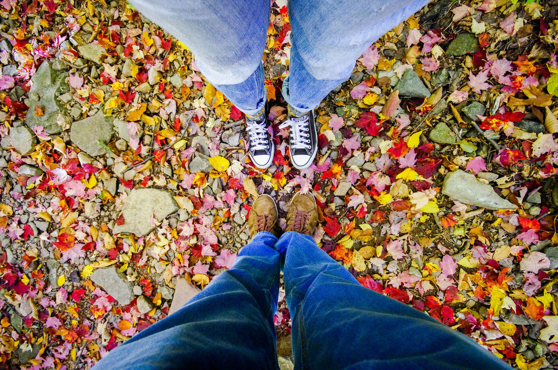 Standing in leafs II Autumn Autumn Colors Autumn Leaves Blue Jeans Casual Clothing Catskill Mountains Chucks Footwear Friendship Happiness High Angle View Human Body Part Human Leg Jeans Leafs Lifestyles Low Section Part Of Person Personal Perspective Real People Red Shoe Standing Top Down View
