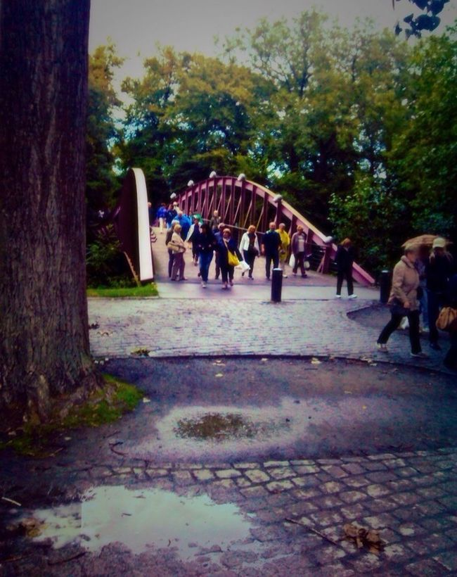 Humpday Have A Nice Day♥ Bridge Rainy Days