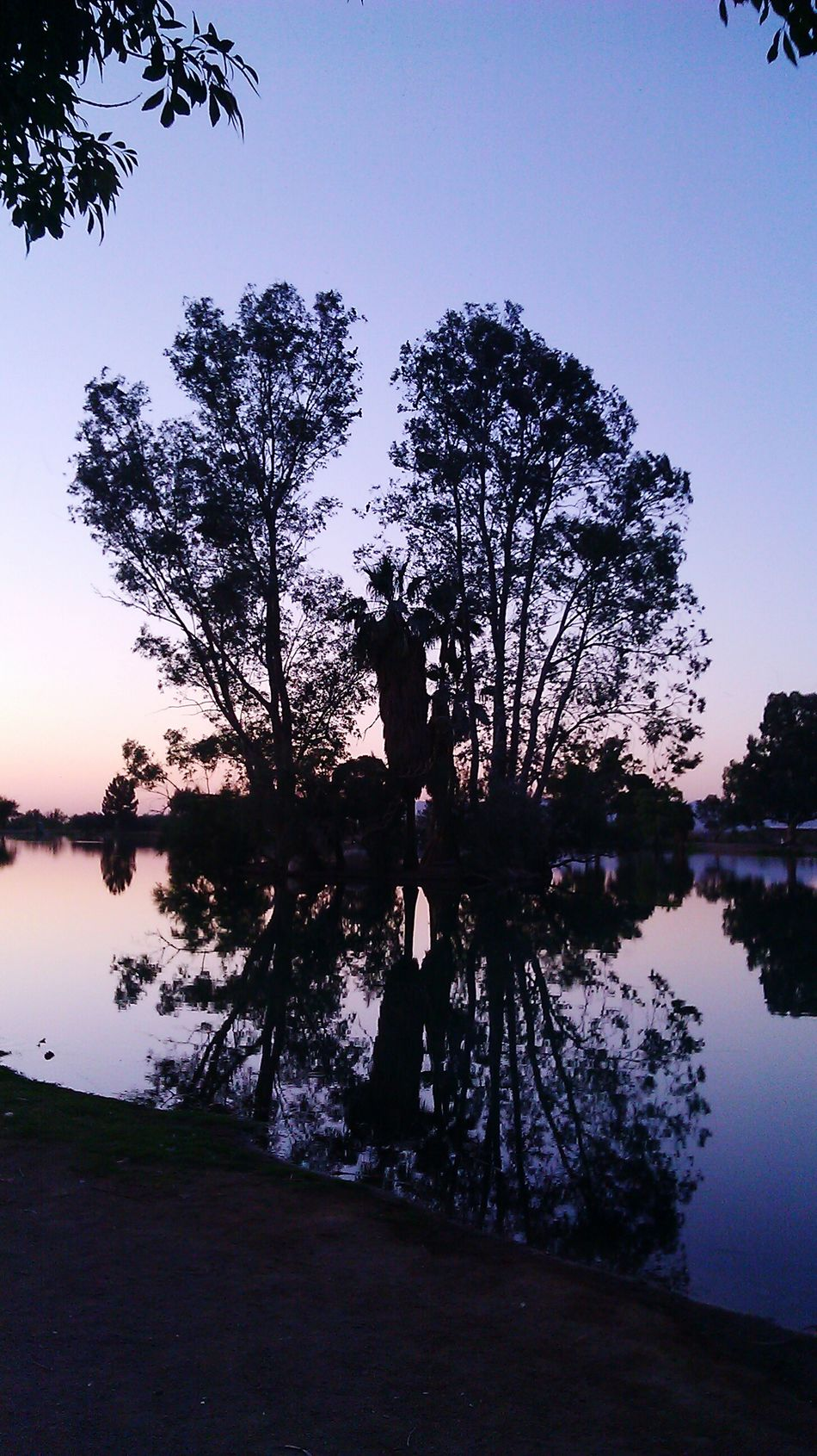 Fishing Spot Island On The Lake Outdoors End Of The Day Beautiful Place Pink Sky Water Reflections