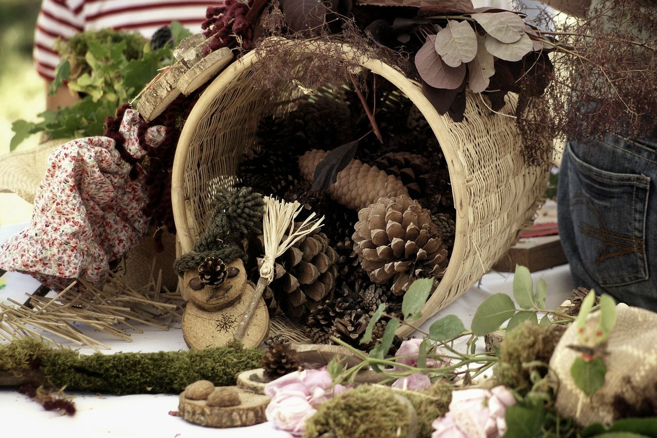 Pine Cones In Container On Table