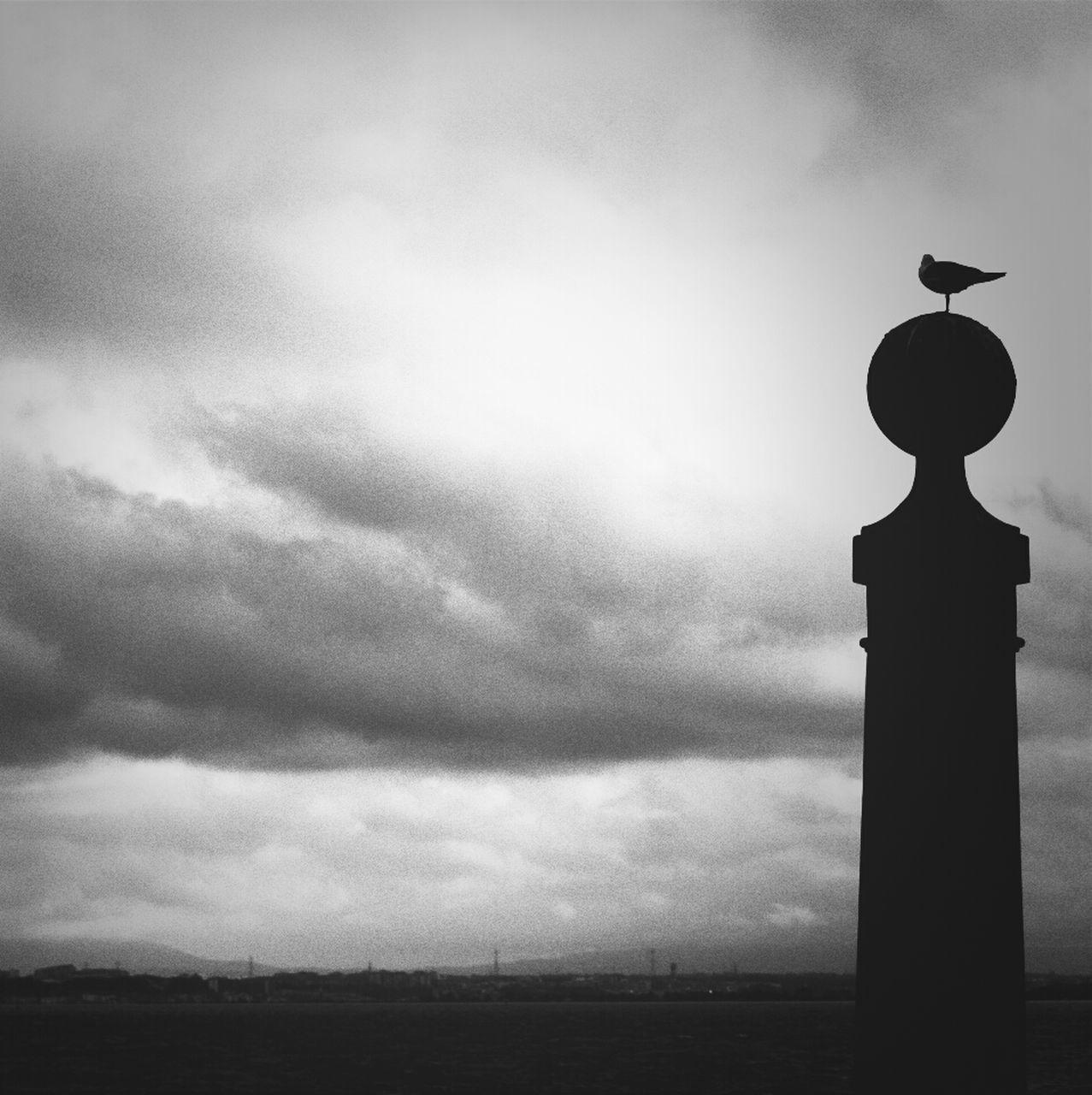 Bird On Pole Against Cloudy Sky