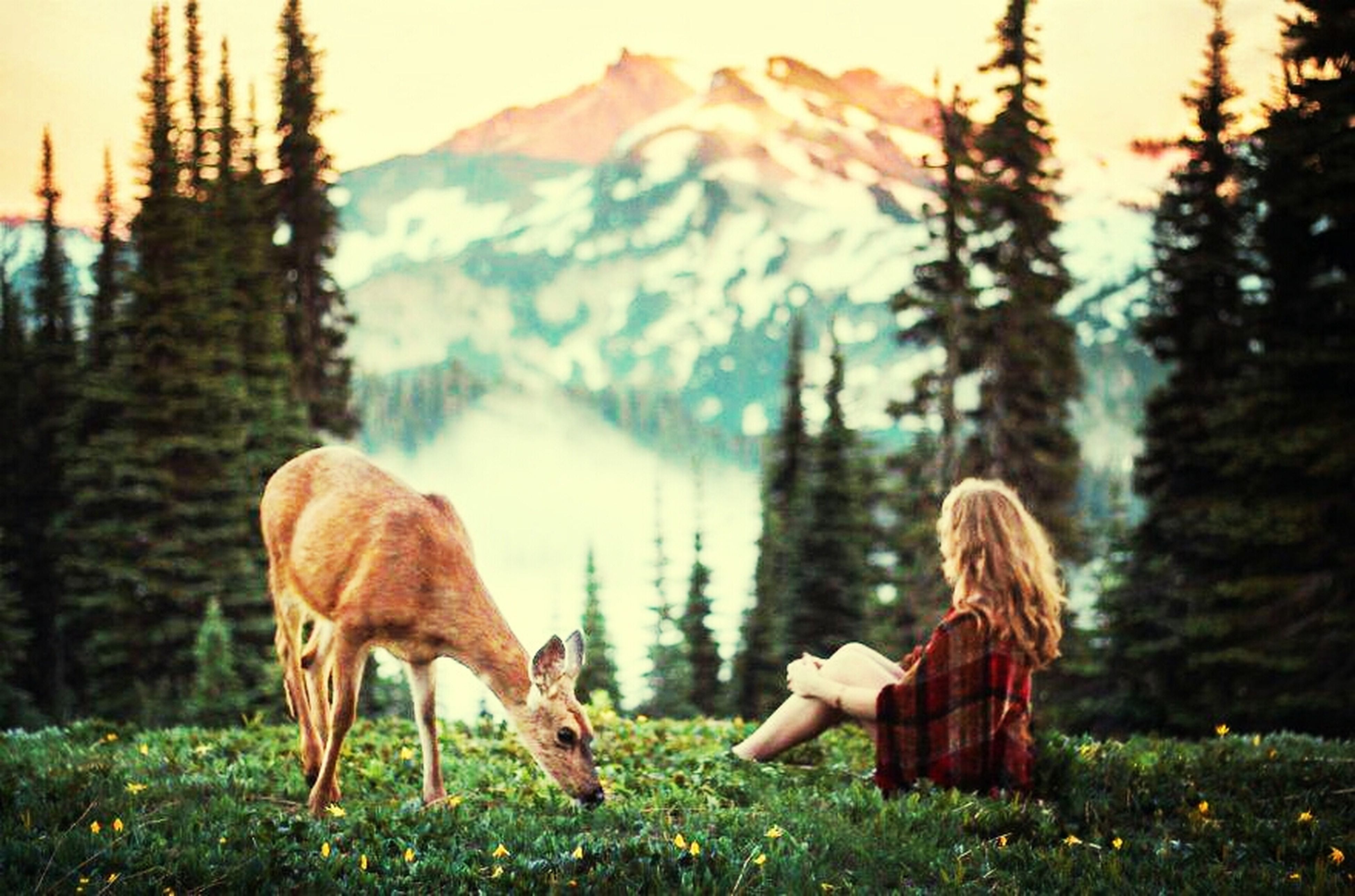 rear view, lifestyles, standing, full length, leisure activity, tree, mountain, casual clothing, grass, side view, three quarter length, nature, focus on foreground, field, long hair, beauty in nature, tranquility, person