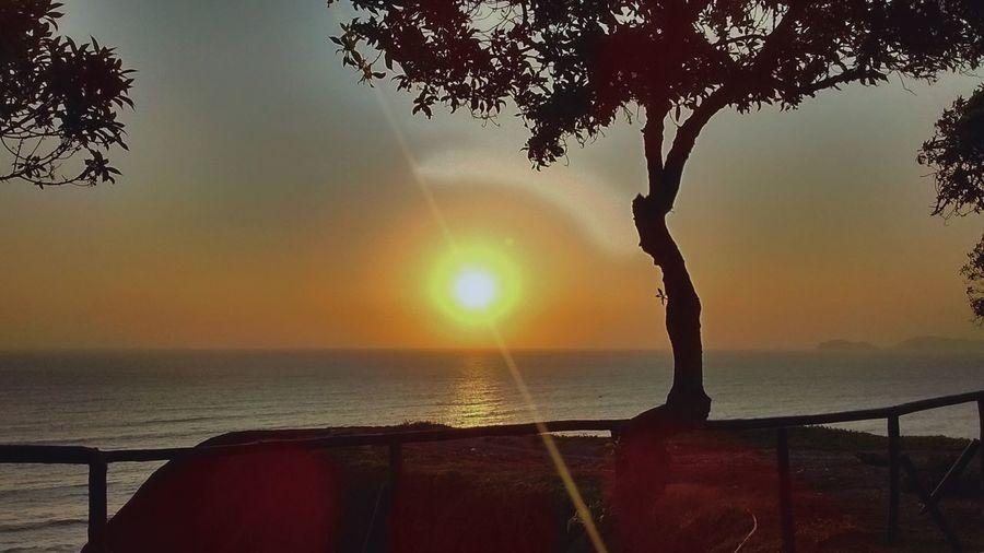 Sunset Sunset_collection Sunday Afternoon Ocean Oceanwater Skyline Skylight