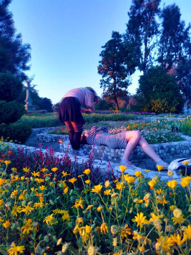 Photography Photo Pic Plants Beauty In Nature EyeEm Batumi Botanic Garden